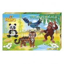 """Caja regalo 6000 beads midi """"Animales de la Selva"""""""