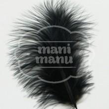 Pluma de Marabú Negra